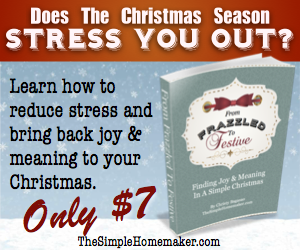 From Frazzled To Festive - Finding Joy and Meaning in a Simple Christmas. Only $7