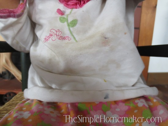 A Simple Stain Solution: Fels Naptha Stain Remover and Laundry Bar