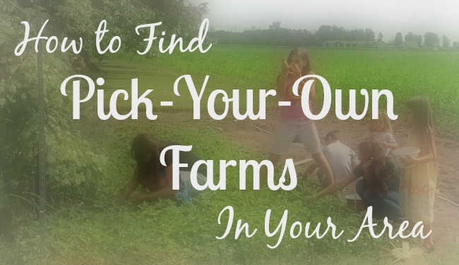 How to Find Pick-Your-Own Farms in Your Area