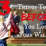 Before You Lose Your Wallet 2