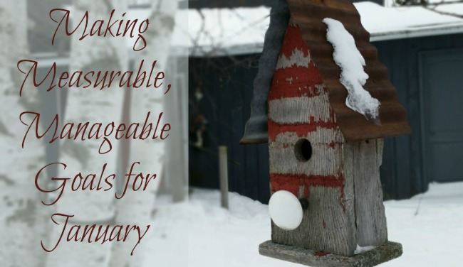Let's Set Some Mostly Measurable, Manageable Goals for January