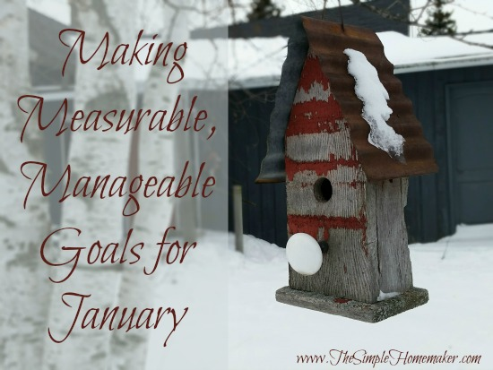 Since year-long resolutions to work for me (or most mere mortals), I'm setting mostly measurable, manageable monthly goals. Join me!